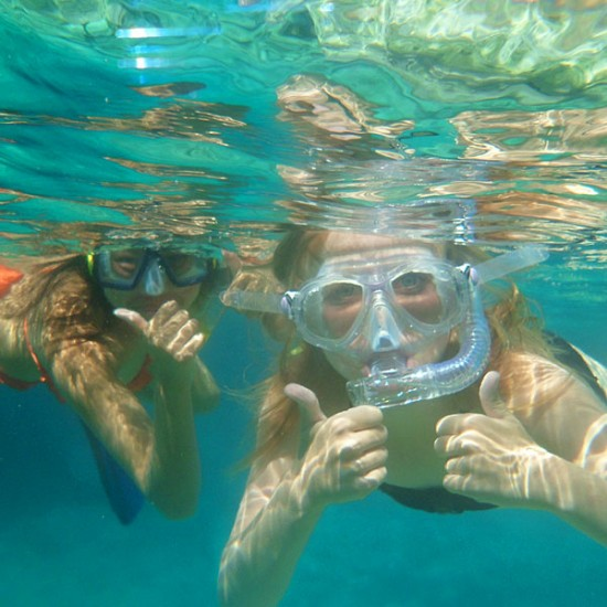 Discover Snorkeling from the Beach
