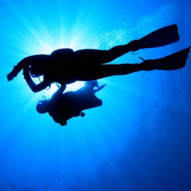 Refresh Dive