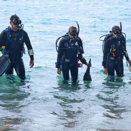 Shore Dive