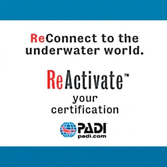 Padi ReActivate Course